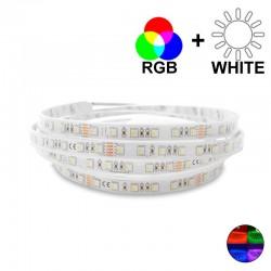 Ruban LED 14,5 Watts/m - RGBW MonoLED - Rouleau 5 mètres 24V