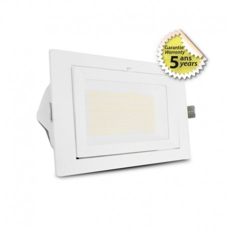 Spot LED inclinable avec alimentation 32/38W